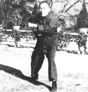 Pak  Mei fist -3