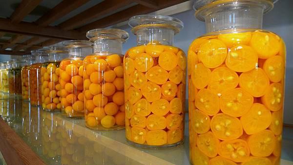 宜蘭橘之鄉形象館  AGRIOZ咖啡館
