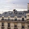 巴黎公寓窗外的艾菲爾鐵塔