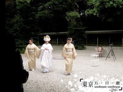 新娘~~這天好像有兩對新人在明治神宮結婚呢