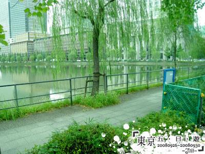 皇居外的護城河,很寬一條