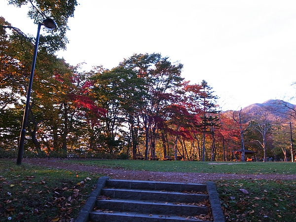 20101019-017支笏湖散策.jpg