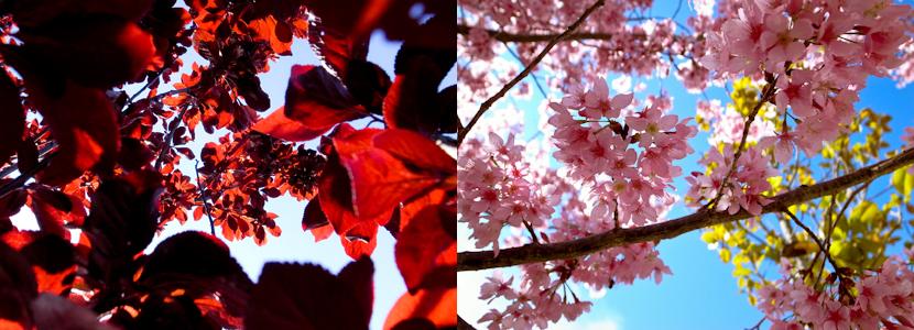 Mar_01_2011.jpg