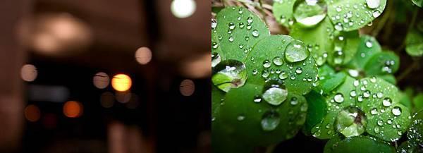 Jan_28_2011.jpg