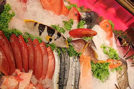 海釣族─生猛海鮮