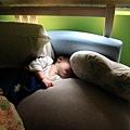 2013-0201-001躲在洞裏的睡法