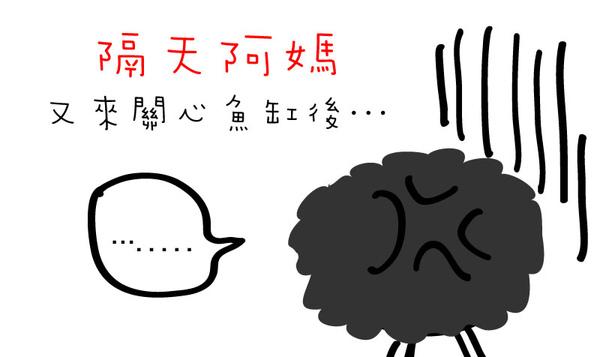 養魚篇 (5).jpg
