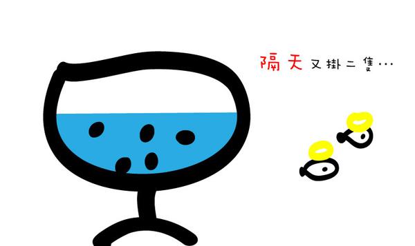 養魚篇 (8).jpg