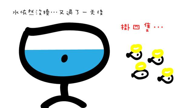 養魚篇 (9).jpg