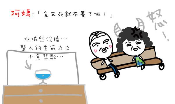 養魚篇 (11).jpg