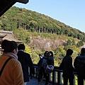 2010-0417京都 (440).JPG