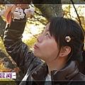 2010-0417京都 (210).JPG