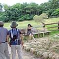 2010-0717-18b飛牛民宿-088.JPG