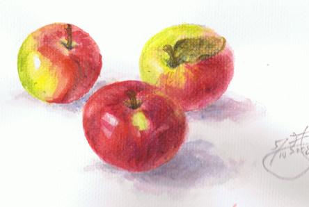 水彩練習-蘋果