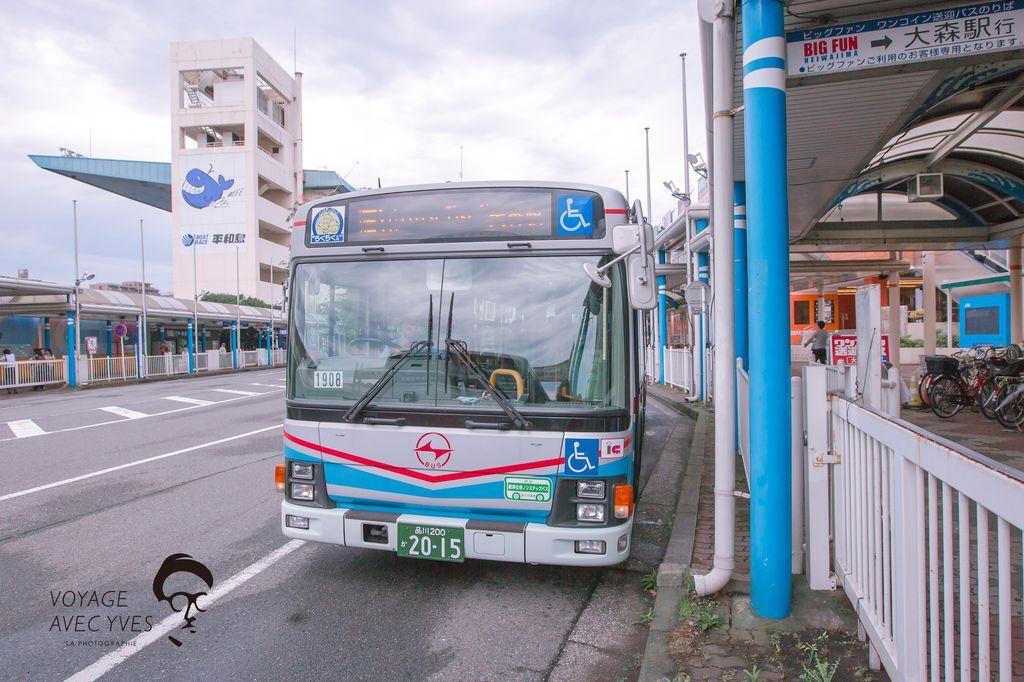 VJ3A0102.jpg