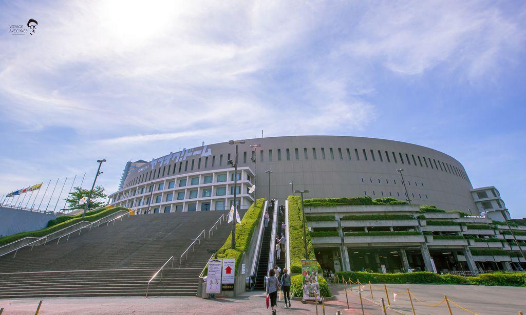 Dome (11).jpg