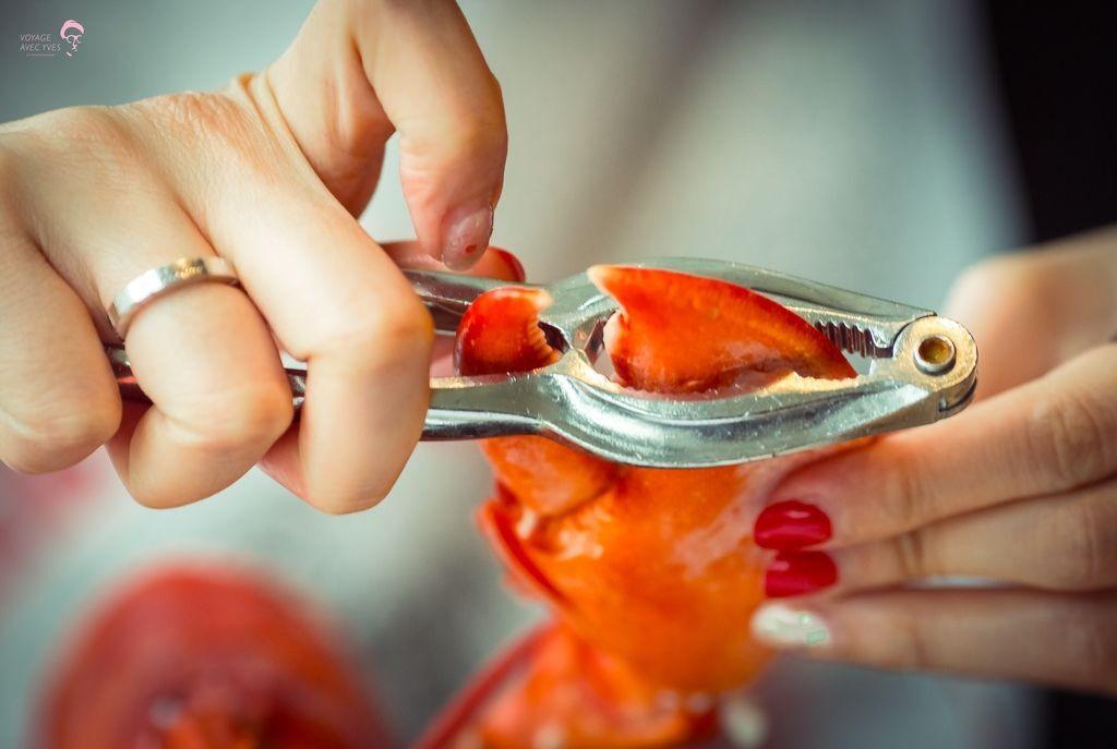 Lobster (1).jpg