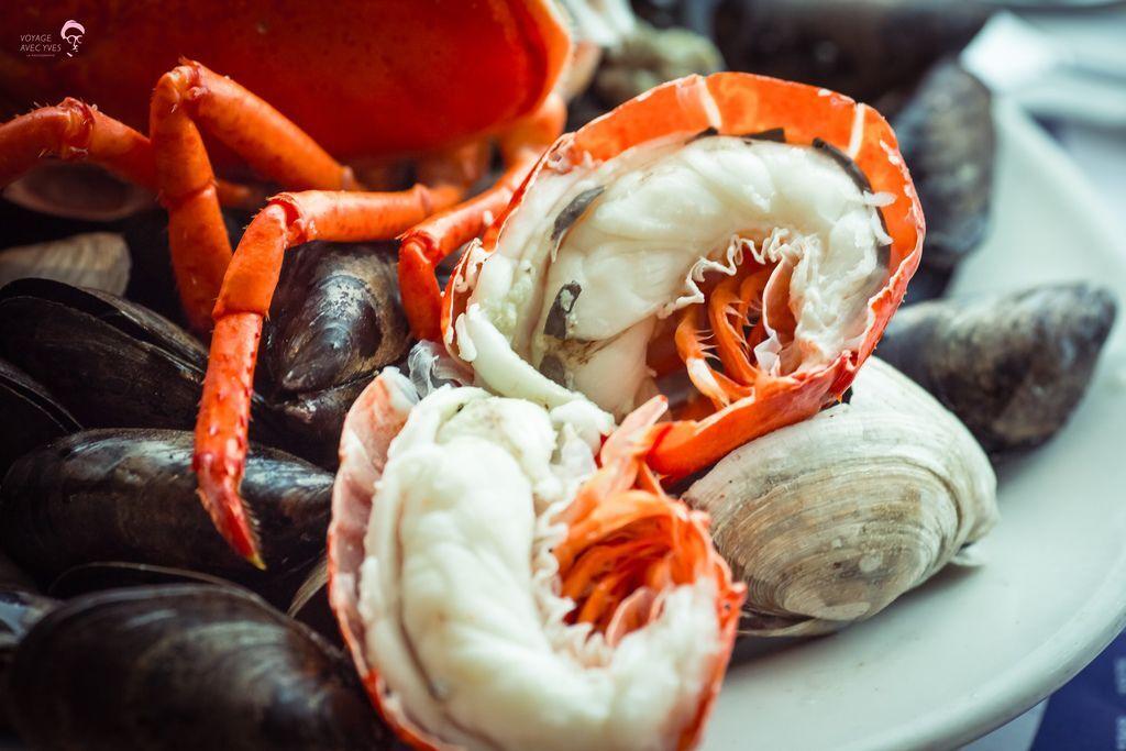 Lobster (3).jpg