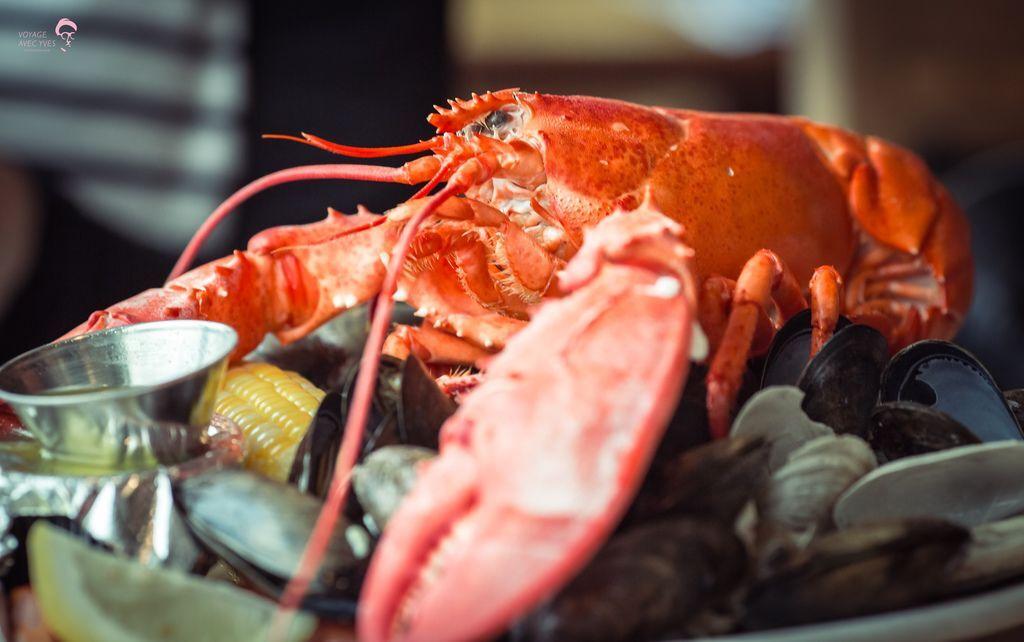 Lobster (7).jpg