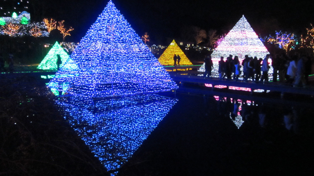 關東三大聖誕裝飾之一--足利花園