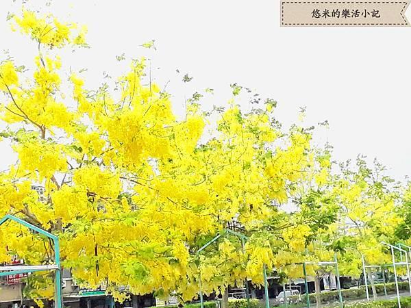 仁德家樂福 - 4.jpg