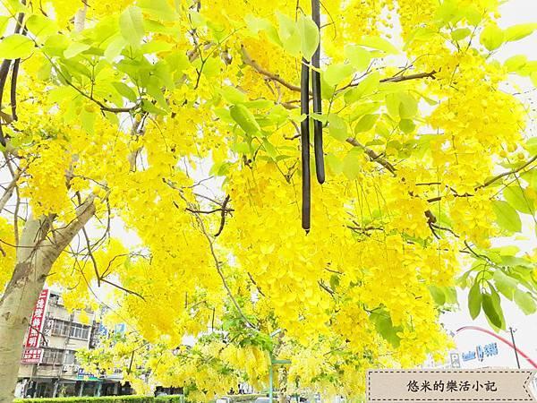 仁德家樂福 - 7.jpg