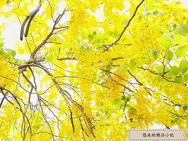 仁德家樂福 - 9.jpg