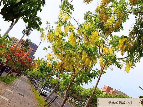 成大校園旁(林森路) - 7.jpg