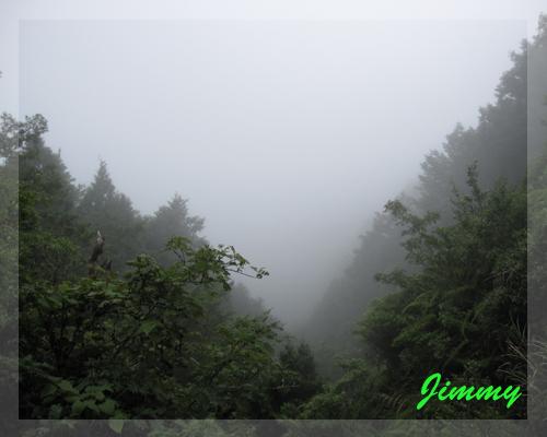 湖被霧遮住.jpg