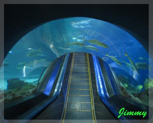 海底隧道.jpg