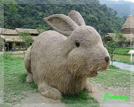 大兔子.jpg