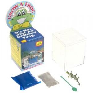 grow-a-frog-300x300