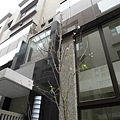 [新竹] 竹慶建設「築沁」2012-02-22 015