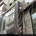 [新竹] 竹慶建設「築沁」2012-02-22 017
