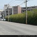 [竹北] 安豐建設「大樹哲學」2012-03-16 005