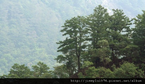[台中] 谷野會館簡介(谷野會館提供)2012-04-20 035