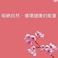 [竹北] 晨寶建設「晨寶No.5有晴」2012-04-25 005