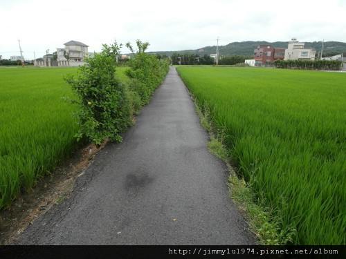 [竹北] 騰聯建設「金穗」2012-05-16 067