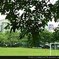 [竹北] 潤達建設「八想」2012-06-26 010