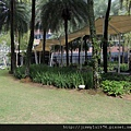 [新加坡] Orchard Scotts 2012-12-14 069