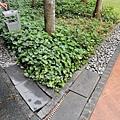 [新加坡] Orchard Scotts 2012-12-14 070