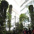 [新加坡] 國家圖書館 2012-12-15 042