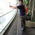 [新加坡] 國家圖書館 2012-12-15 043