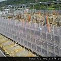 [竹北] 閎基開發「世界雲」2012-12-30 001
