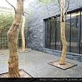 [竹北] 竹星建設「竹北之星」2013-01-09 001