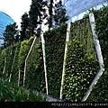 新加坡ION Orchard戶外植生牆