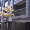 [竹南] 達利建設「哲里」全新完工 2013-05-05 015