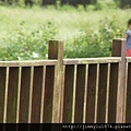 [新竹千甲] 金鋐建設「金鋐微美」(大樓)基地周遭環境 2013-11-25 027.jpg