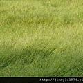 [新竹千甲] 金鋐建設「金鋐微美」(大樓)基地周遭環境 2013-11-25 031.jpg