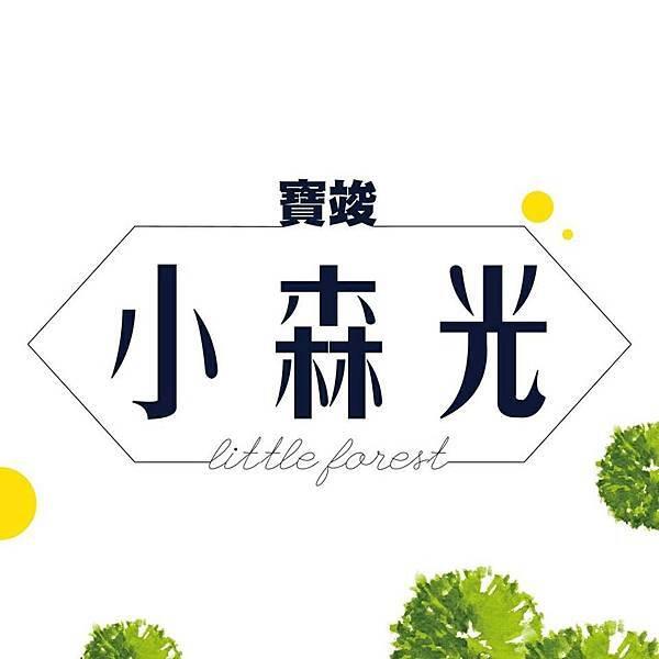 [桃園高鐵] 寶峻建設-小森光No.1(大樓) 2015-12-04 009